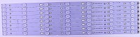 006-P1K3465A TCL led strips for TV model 55US5800